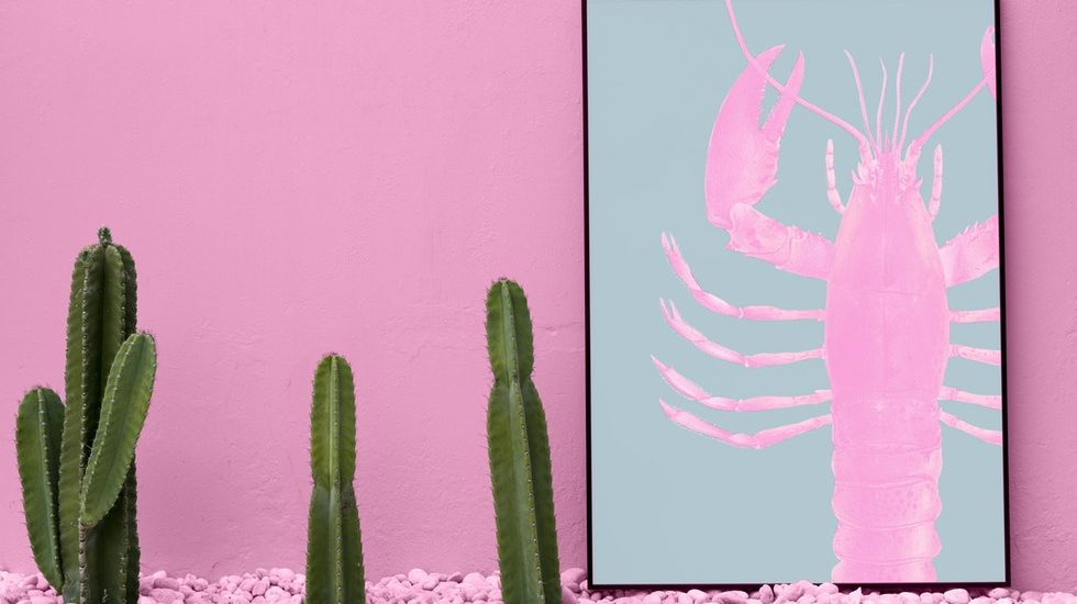 inject colour into your home