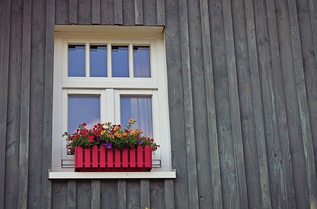 how to choose flowers for window boxes