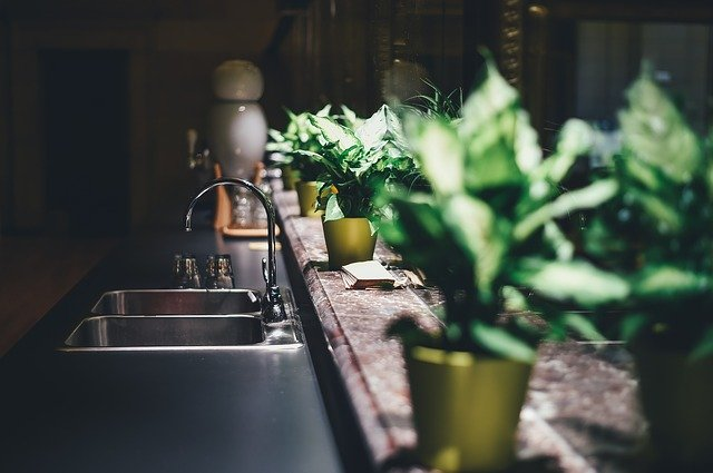 How Creating Your Own Indoor Garden Can Benefit You